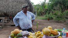 Des alternatives aux dérèglements climatiques en Bolivie